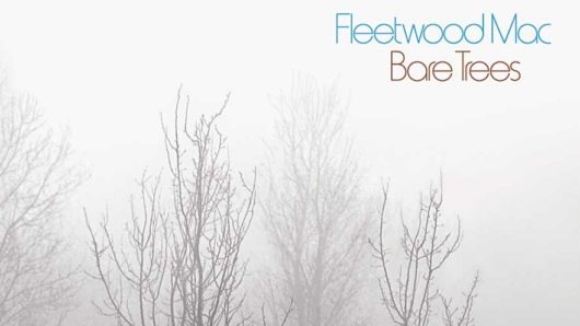 Bare Trees: Exposing Fleetwood Mac's Alternative Roots