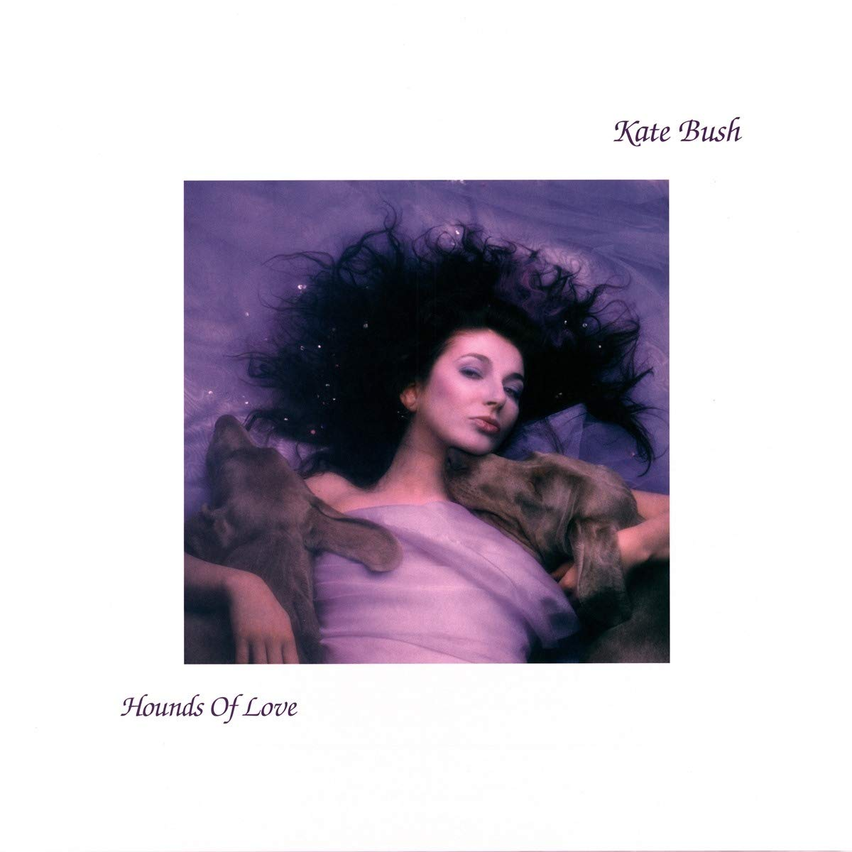Hounds of Love 80s album cover